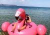 O săptămână cu flamingo roz în Thasos